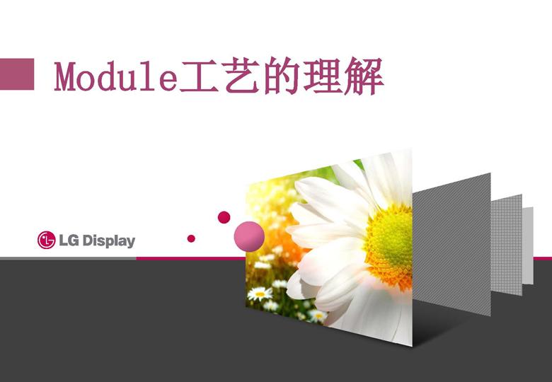 LG display(교육매뉴얼)